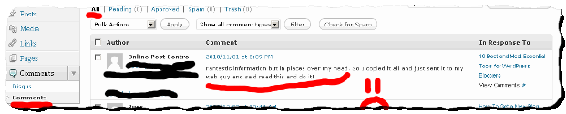 The comment removed from Disqus is still in the WordPress database - screenshot